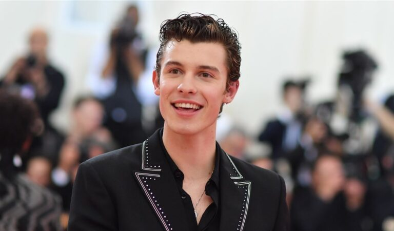 Shawn Mendes Top 5 Teen Music Stars